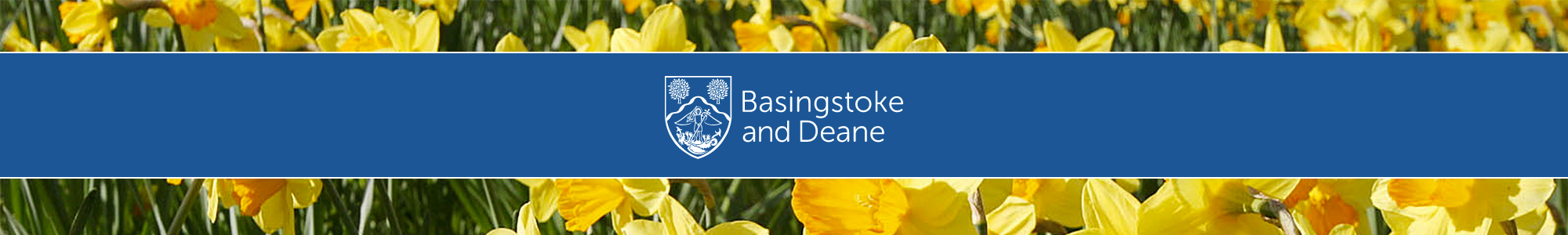 Basingstoke and Deane Borough Council