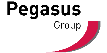 Pegasus Group. logo