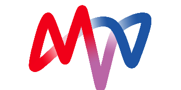 MVV Environment Ltd logo